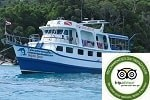 Budget Similan liveaboard dolphin queen