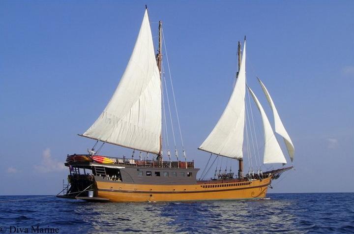 Diva Andaman under sail