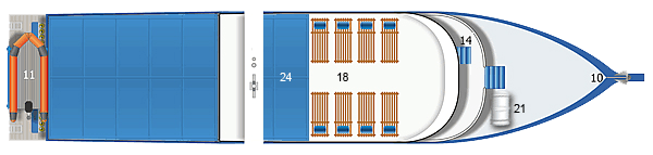 dolphin-queen-layout-sun-deck
