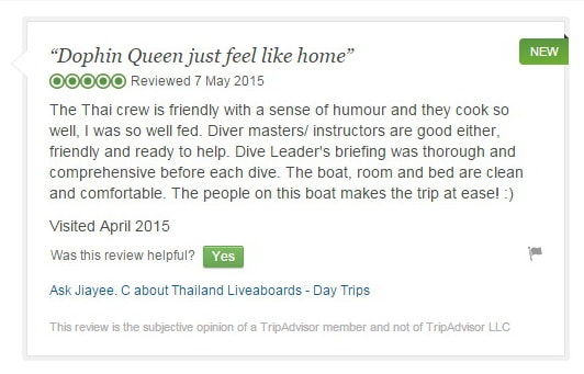 Dolphin Queen Tripadvisor