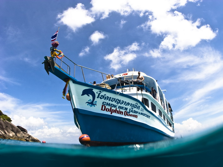 dolphin queen budget similan islands liveaboard