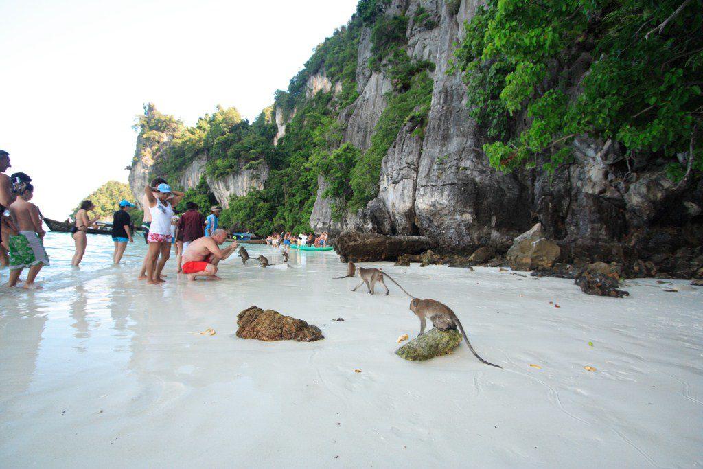 Monkey Beach Phi Phi Island