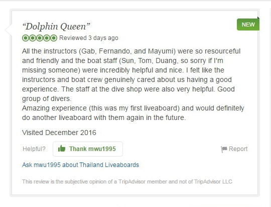 Dolphin Queen Trip Advisor review