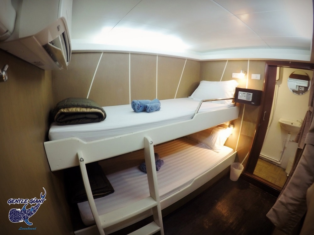 Gentle Giant Standard cabin