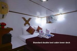 Pawara standard double cabin