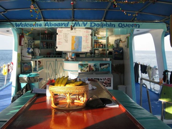 Dolphin Queen upper deck